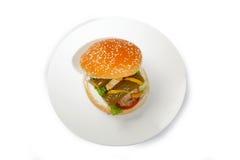 Kippenhamburger stock foto's