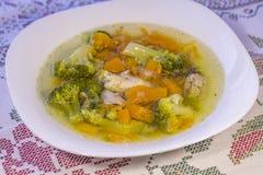 Kippensoep met pompoen en broccoli Stock Afbeelding