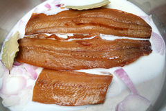 Kippers with milk and onion Stock Photography