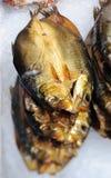 Kippers sul ghiaccio del Fishmonger fotografia stock libera da diritti