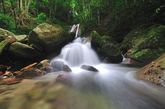 Kipungit waterfall in Poring Hot Spring, Kinabalu National Park. Stock Photography