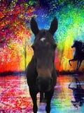 Kira eins unserer Pferde Stockbild