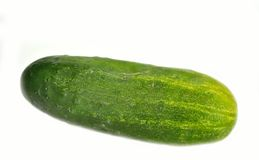 Kirby cucumber Stock Images