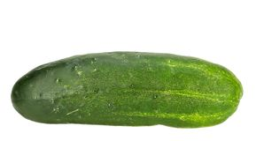 Kirby cucumber Stock Image