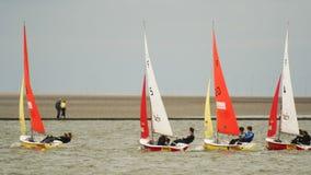 Kirby Marine Lake Sailboat Race ad ovest Immagine Stock Libera da Diritti