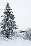 Kirchberg i Tirol arkivbild