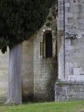 Kirche/Abtei von Sant Antimo in Montalcino Toskana Italien lizenzfreie stockbilder