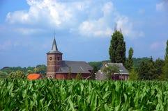 Kirche auf dem Maisgebiet. lizenzfreie stockfotografie