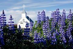 Kirche auf einem Gebiet der arktischen Fireweeds Lizenzfreie Stockfotos