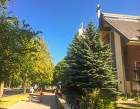 Kirche durch eine grüne Straße stockfoto