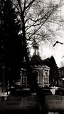 Kirche in Lutsk, in Ukraine u. in der Krähe lizenzfreie stockbilder