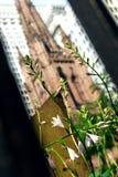 Kirche mit Blumen Stockbild