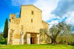 Kirche Sant Antimo Montalcino und Olivenbaum. Orcia, Toskana, es Lizenzfreie Stockbilder