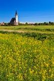 Kirche- und Blumenfeld an einem sonnigen Tag Lizenzfreie Stockfotografie