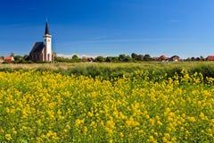 Kirche- und Blumenfeld an einem sonnigen Tag Stockbild