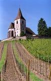 Kirche und Reben Lizenzfreies Stockfoto
