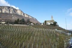 Kirche und Weinberg in Tirol Stockbild