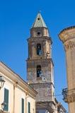 Kirche von St. Severino San Severo Puglia Italien Lizenzfreies Stockfoto