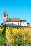Kirchen-Heiliges-Sulpice mit Weinberg Stockfotografie