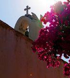 Kirchenglocke-Kontrollturmblumen stockfotos