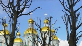 Kirchenhauben und schwarze Bäume stock footage