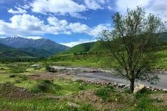 Kirgistan beskådar Royaltyfria Bilder