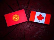 Kirgistan flaga z kanadyjczyk flaga na drzewnym fiszorku odizolowywającym obrazy royalty free