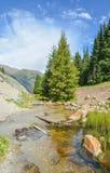 Kirgistan natura, Gregory wąwóz Fotografia Royalty Free