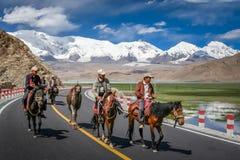 Kirgiz folk på hästar Arkivbild