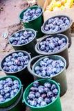 Kirgizstan marknadsplommoner Royaltyfri Fotografi
