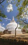 Kiri Vihara stupa在Polonnaruwa,斯里兰卡 库存照片