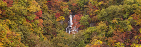Kirifuri Falls near Nikko, Japan in autumn Royalty Free Stock Photography