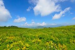Kirigamine в Nagano, Японии Стоковое фото RF