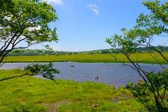 Kirigamine в Nagano, Японии Стоковая Фотография RF