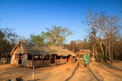 Kirindy campsite. Campsite in the dry forest of Kirindy Mitea National Park in Madagascar royalty free stock photo