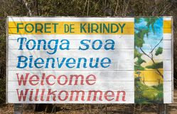 Kirindy forest. Kirindy Mitea National Park is a national Park of Madagascar. It is situated in Menabe Region. The Madagascar dry deciduous forests represent a Stock Images