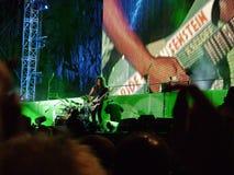 Free Kirk Hammet From Metallica Royalty Free Stock Photos - 14907938