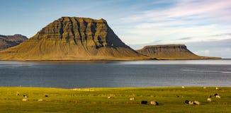 Mt. Kirkjufell, Iceland Stock Photos