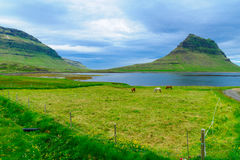 Kirkjufell mountain in the Snaefellsnes peninsula Royalty Free Stock Photography