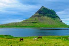 Kirkjufell mountain in the Snaefellsnes peninsula stock photos