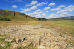 Kirkjugolf basalt columns Stock Images