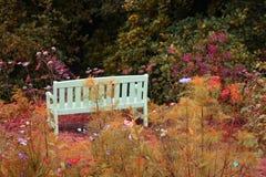 Kirklinton Hall Landscape imagem de stock