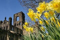 Kirkstall Abtei, Nordyorkshire Stockfotos
