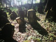 Abandoned cemetery. Artistic look in colours. stock photography