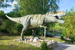 Tyrannosaurus Rex in `Dinopark` Royalty Free Stock Images
