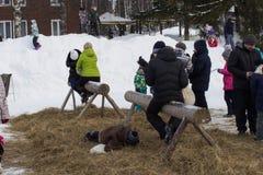 KIROV RUSSIA-FEBRARY 18, 2018: beröm av Maslenitsa ferie, rolig stridighet för tradition med påsar, en pojkeavverkning Fotografering för Bildbyråer