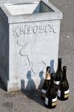 Kirovsk, het gebied van Leningrad, Rusland, September 2018 Ochtend na een vakantie in de stad, lege flessen dichtbij de urn royalty-vrije stock foto