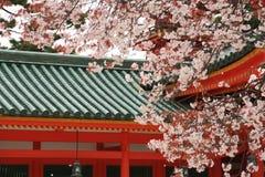 Kirschbäume von Heian-jingu SH Lizenzfreies Stockfoto