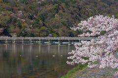 Kirschblüte, Arashiyama im Frühjahr, Kyoto, Japan Lizenzfreie Stockfotografie