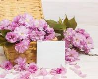 Kirschblüte-Blumen auf Mutter-Tageskarte Lizenzfreie Stockfotos